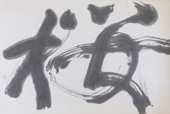 m.mouri..rideko.DSCF1958 (800x600)-tr