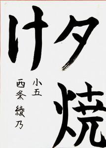 508.4.saijouayano